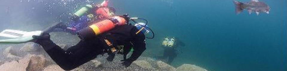 Red Hat Diving 50lb wing Just one part of the Maximus wing system New